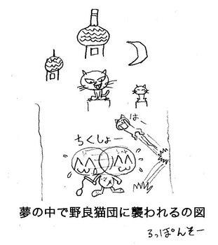 夢の中の猫.jpg