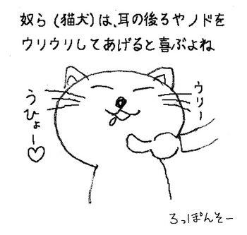猫なで.jpg